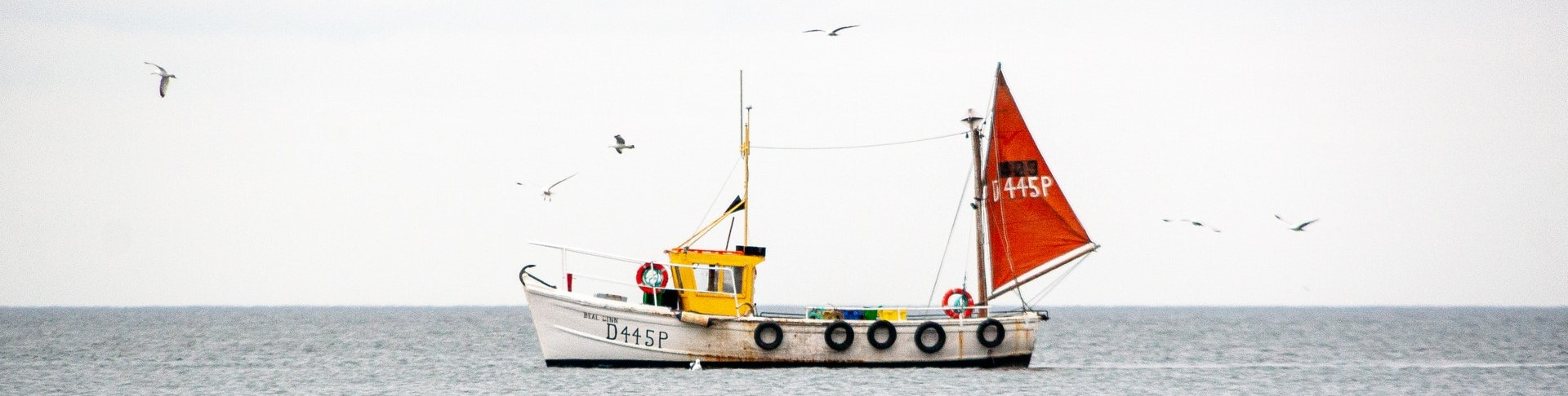 yellow-and-white-sail-boat-on-sea-3703074